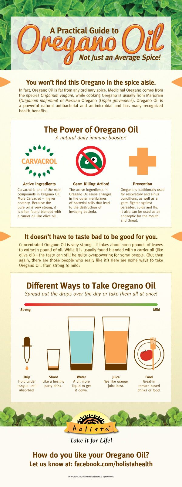 A Practical Guide to Oregano Oil (Infographic) | Webber Naturals #infographic #health #food