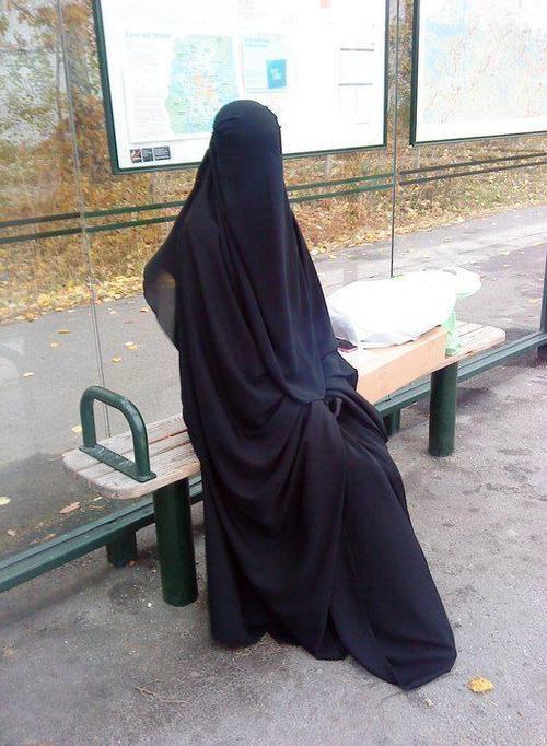 sittar! just beautiful.....!