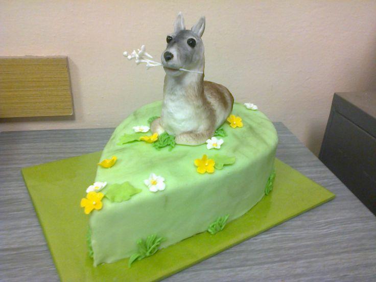 Cake lama