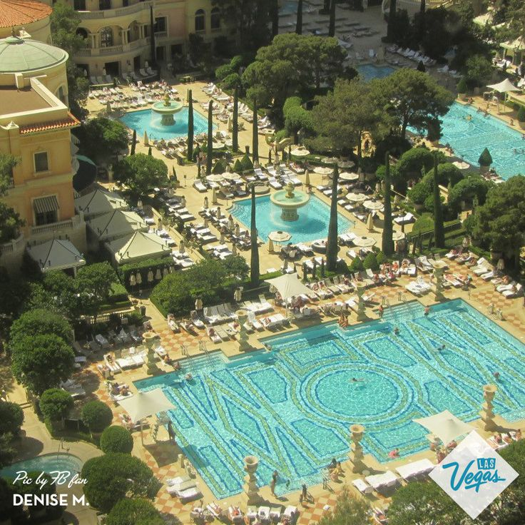 78 Images About Vegas Hotel Pools On Pinterest Flamingo Hotel Planet Hollywood Las Vegas And