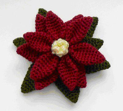 Conocida también como Poinsettia, Flor de Pascua o Estrella de Navidad. Esta planta originaria de México cuyo nombre científic...