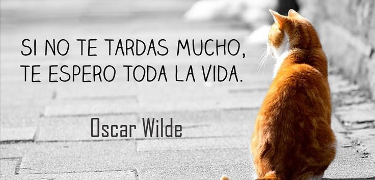 Frase Oscar Wilde