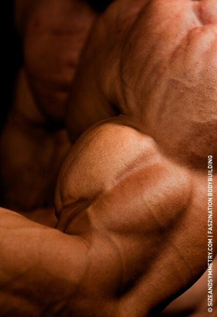 Pin by Rufus RedWolf on Gymspiration | Pinterest | Bodybuilding, Fitness and Muscle