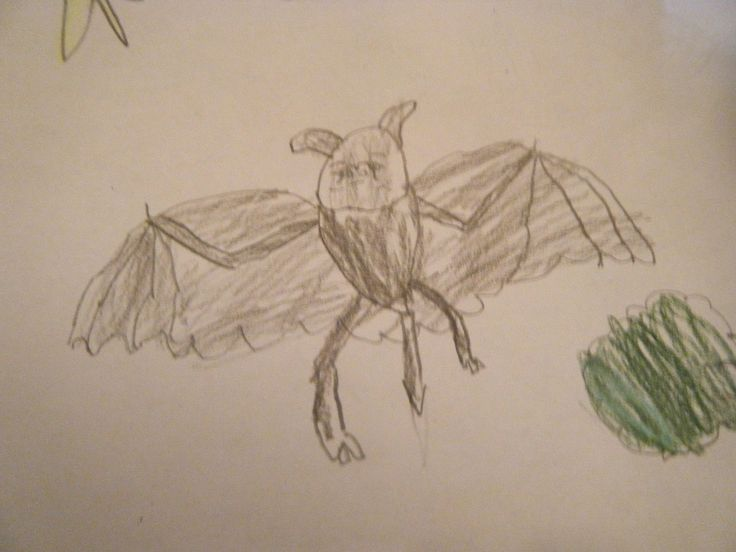 Because my little sister-in-law knows I love bats!