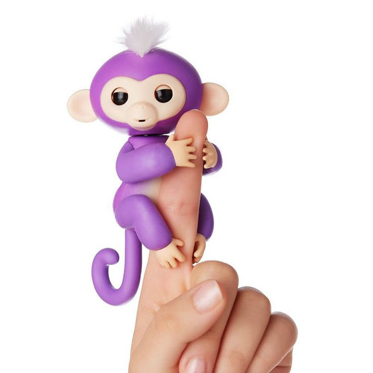 Genuine fingerlings monkey Mia climbing to your fingers