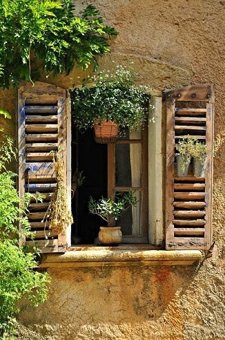 plaster wall, shutters, hanging flowers