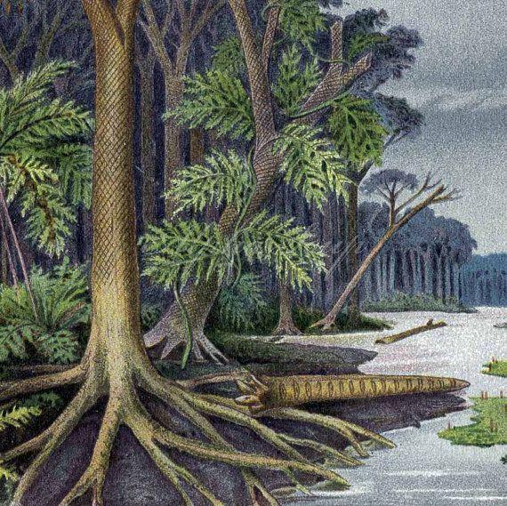 Carbonization Forests Wetlands Coal Formation Carboniferous Period 1909 Vintage German  Chromolithograph