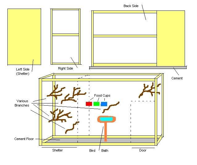 build an aviary - java finch or java sparrow