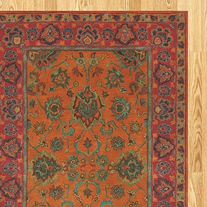 a delightful rug...any wool area rug makes a nice addition to a room and can make it pop.