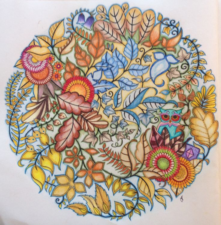 44 best Enchanted Forest: An Inky Quest & Coloring Book ...