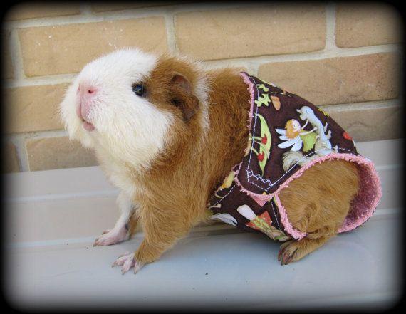 Piggy Pantie  cute handmade Guinea Pig Cavy Cloth by EmmasBears, $8.94