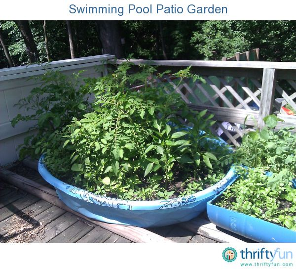 "We do not have a place in our backyard to plant a ""regular"" garden, but we did have room on our patio deck to do something. I came up with an idea for a small garden using a child's plastic swimming pool."
