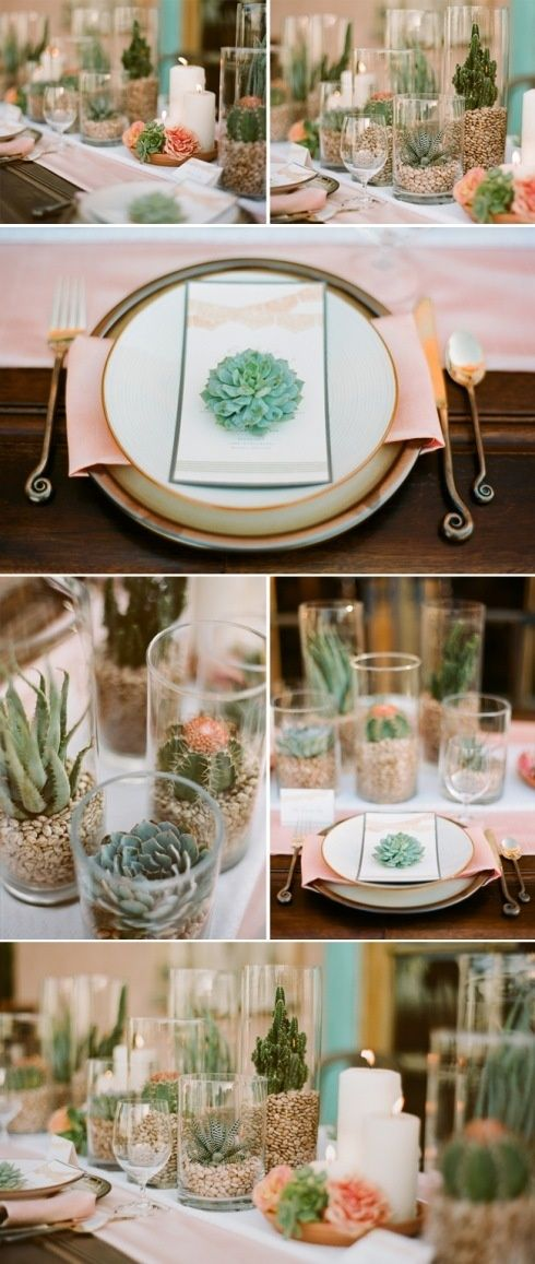 Succulent centerpiece ideas. Would work great with the cylinders that I have for rent. Can use rocks in the bottom as shown or moss would be another option