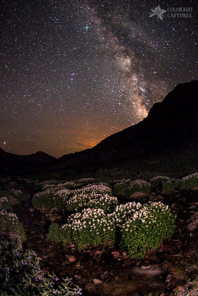 Wildflower Runoff Under The Stars by Mike Berenson on 500px
