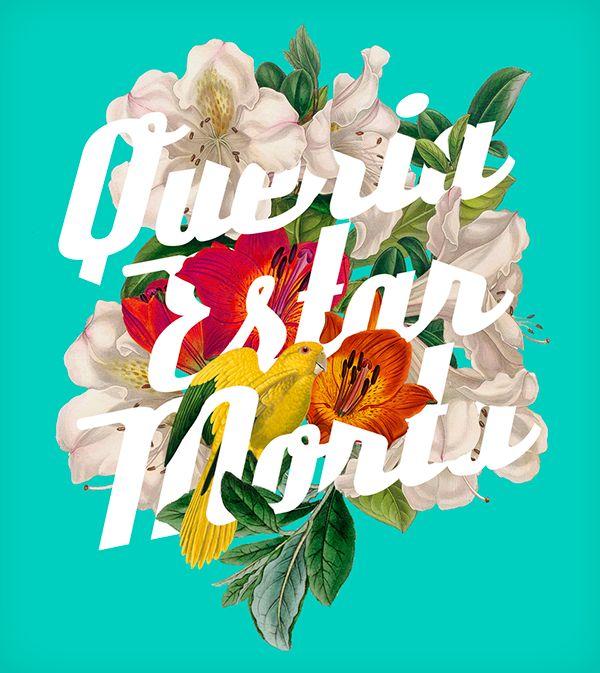 Typography Flower on Behance