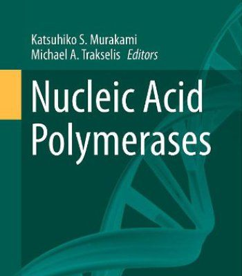 Nucleic Acid Polymerases (Nucleic Acids And Molecular Biology) PDF