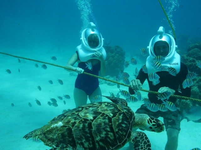 Sea trek: Grand Cayman. Out of this world!