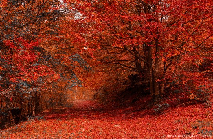 Road of Fire by Christian Chereji on 500px