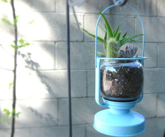 An IKEA lantern can become a planter. | 17 Clever Gardening Tips For CityLiving