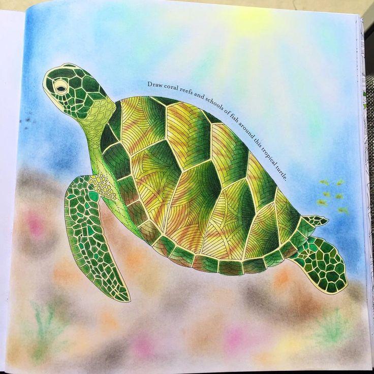 Turtle Adultcoloring Adultcoloringbook Tropicalwonderland Milliemarotta Prismacolor Art