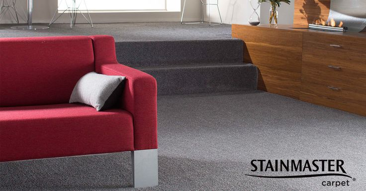 SDN? ACCS? Density? Learn more about STAINMASTER® carpet before you purchase by reading some of the helpful guides on our website http://www.stainmaster.com.au/page/blogs/carpet-need-to-knows #carpet #stainmaster #tips #howto #renovations
