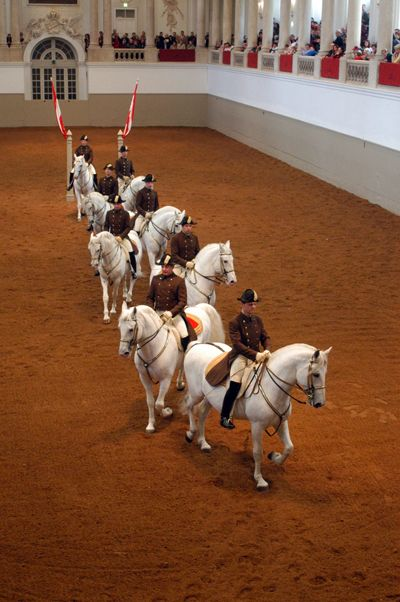 Spaish Riding School | ... - Behind the Scenes: Spanish Riding School in Vienna - Equitrekking