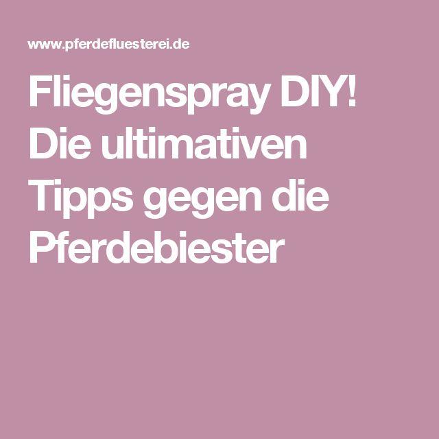 Fliegenspray DIY! Die ultimativen Tipps gegen die Pferdebiester