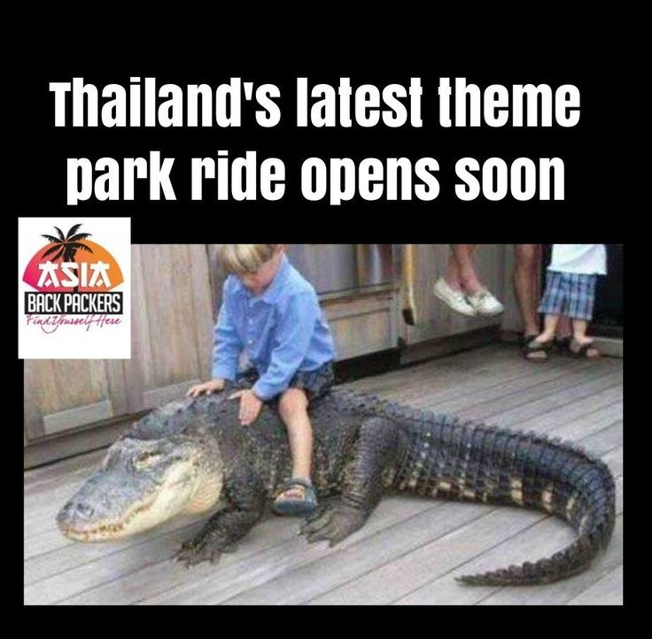 From our Sanook News Desk #Thailand's latest tourist attraction