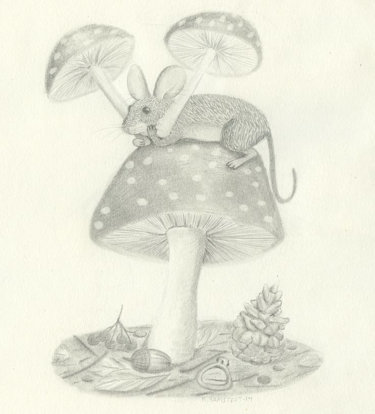 Mouse on a mushroom in the forest. Illustration, maybe for a childrensbook!