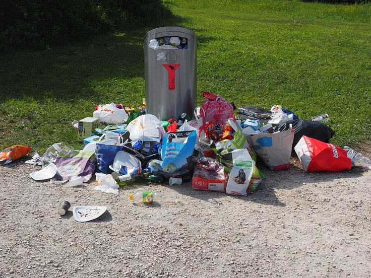 Environment Canada indicates Canada produces about 30 million tonnes of municipal solid waste annually.