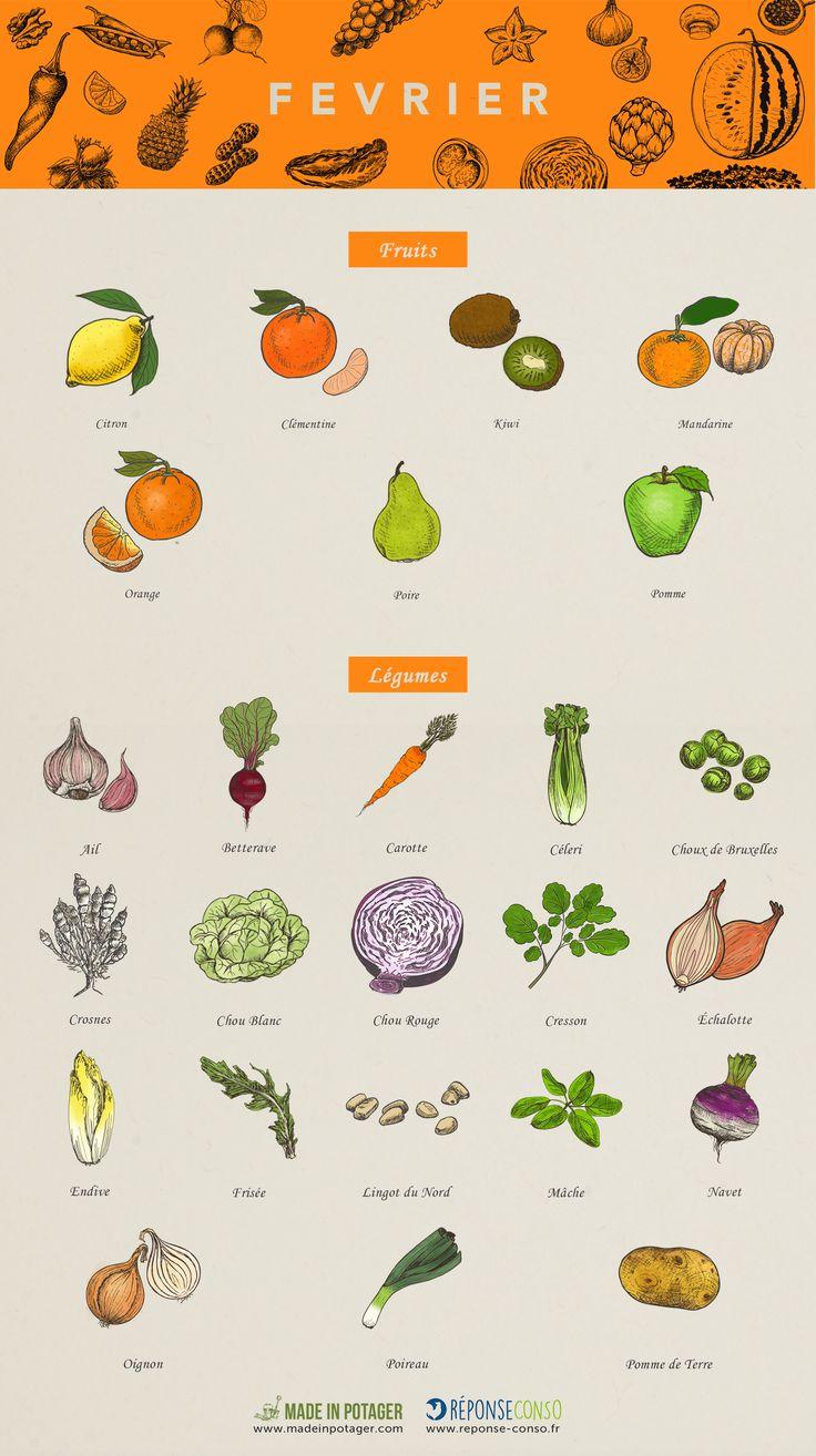 À chaque saison, ses fruits et légumes. Pour consommer durable, Réponse Conso vous dresse la liste des produits à consommer sans modération en février. Poireaux, endives, clémentines, kiwis… Nos papilles vont se régaler!  En février, on tient ses bonnes résolutions. Parmi elles, celle de mieux manger, de privilégier les fruits et légumes dans son assiette. (...)> Lire la suite