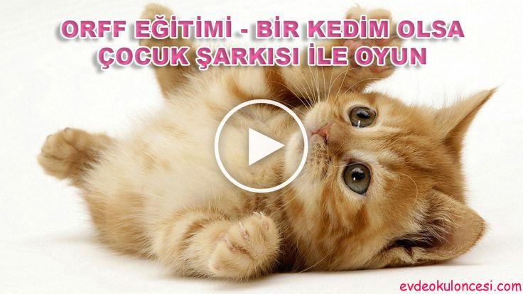 Orff Eğitimi - Bir Kedim Olsa Çocuk Şarkısı İle Oyun