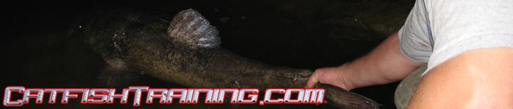Catfish Training-How to catch catfish.