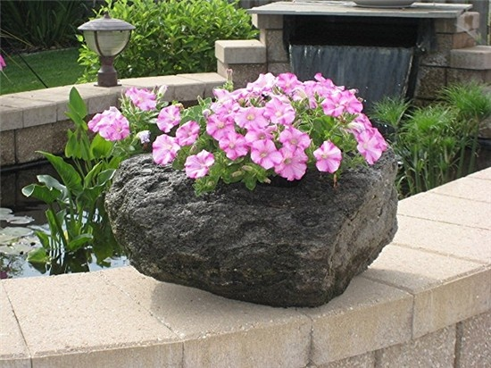 Lava Rock Planter - Gorgeous!