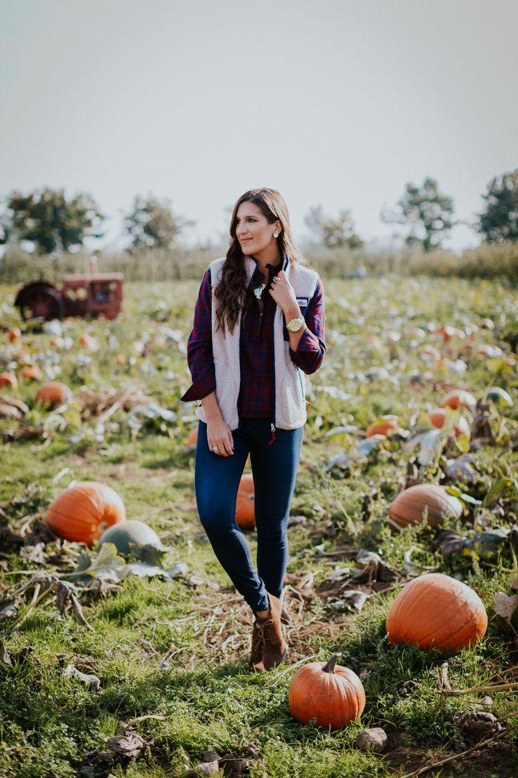 25 best ideas about pumpkin patch on