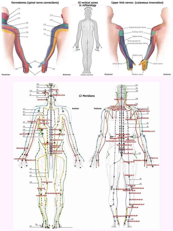 interesting article reflexology