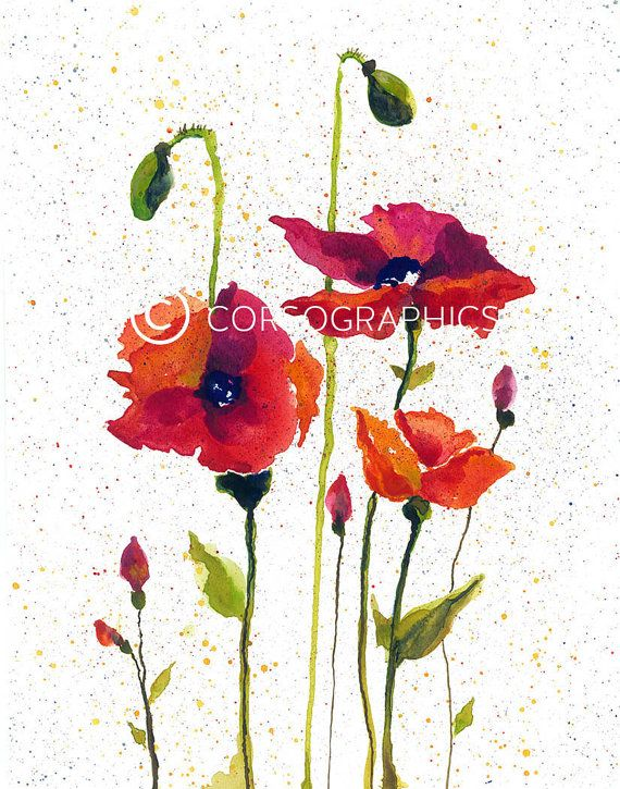 Red poppy painting - flower painting - watercolor flowers ...