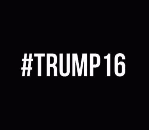 Donald Trump for President Make America Great Again Trump White V2