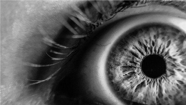 Por Que A Veces Cuesta Mirar A Los Ojos A Alguien Fotografia Macro Arte Para Ojos Fotografia