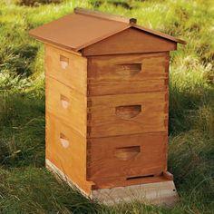 Agrarian Backyard Beehive Kit  Williams-somoma