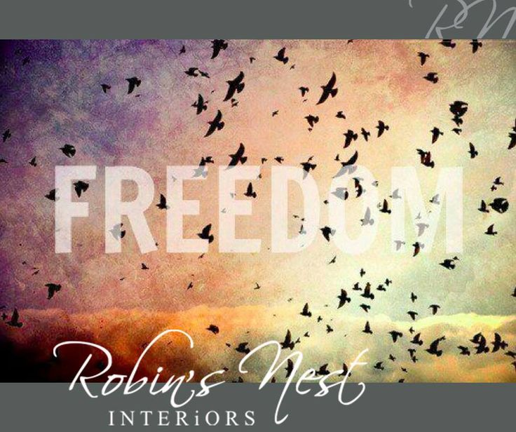 Happy #FreedomDay everyone, we hope you have a wonderful day. #RobinsNest