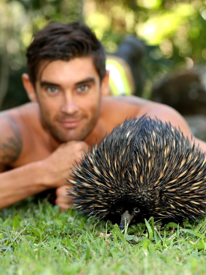 Australian Firefighters Pose With Animals For 2020 Charity