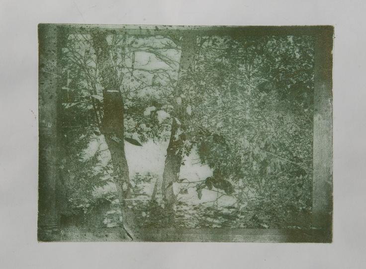 """Nature Series: Lake View""  Harp Lake, Muskoka, Ontario, Canada  Photo-Image,  12x15"", 2012"