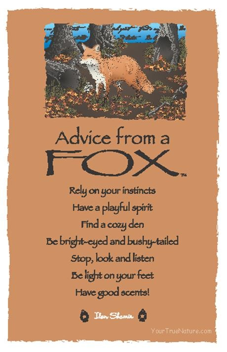 Spirit Totem Animals: #Advice from a #Fox.                              …