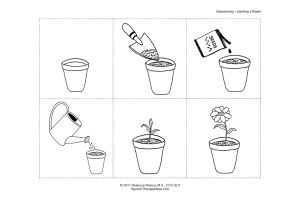 Planting a Flower Sequencing Activity