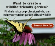 Create a Certified Wildlife Habitat    Whether you have an apartment balcony or a 20-acre farm, you can create a garden that attracts beautiful wildlife and helps restore habitat in commercial and residential areas. By providing food, water, cover and a place for wildlife to raise their young you not only help wildlife, but you also qualify to become an official Certified Wildlife Habitat®.