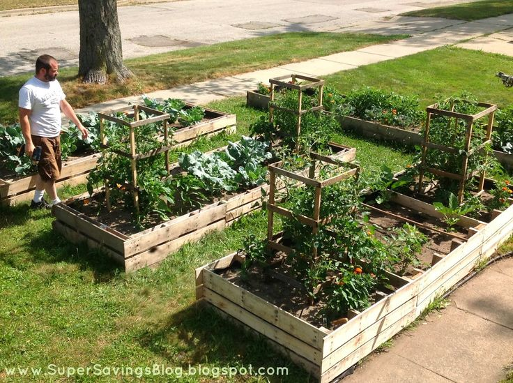 Raised beds from pallets - Super Savings: 5 Tips to Start Your Garden -- for Cheap!