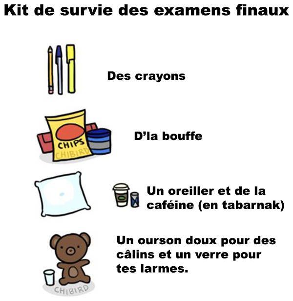 Le kit de survie officiel des examens finaux