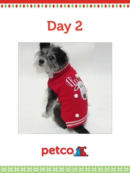 Here is today's 12 Days of Pinterest featured image (12/4/2012). Pin this