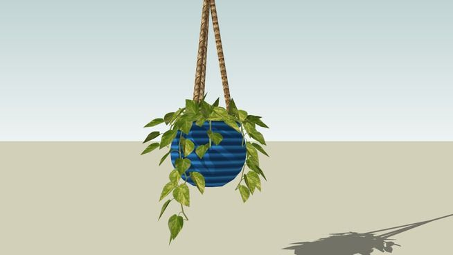 Large preview of 3D Model of Hanging Philodendron